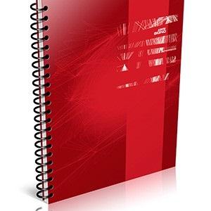Cuaderno 29,7 Arte signo tipo pvc 80 hojas rayado espiral