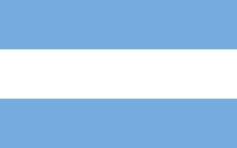 Bandera poliamida 30 x 40 sin sol