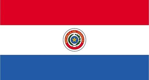 Bandera 90 x 150 paraguay